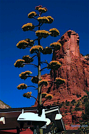 Ricks World Sedona Weather Station Soldiers Pass Coffeepot Cottages